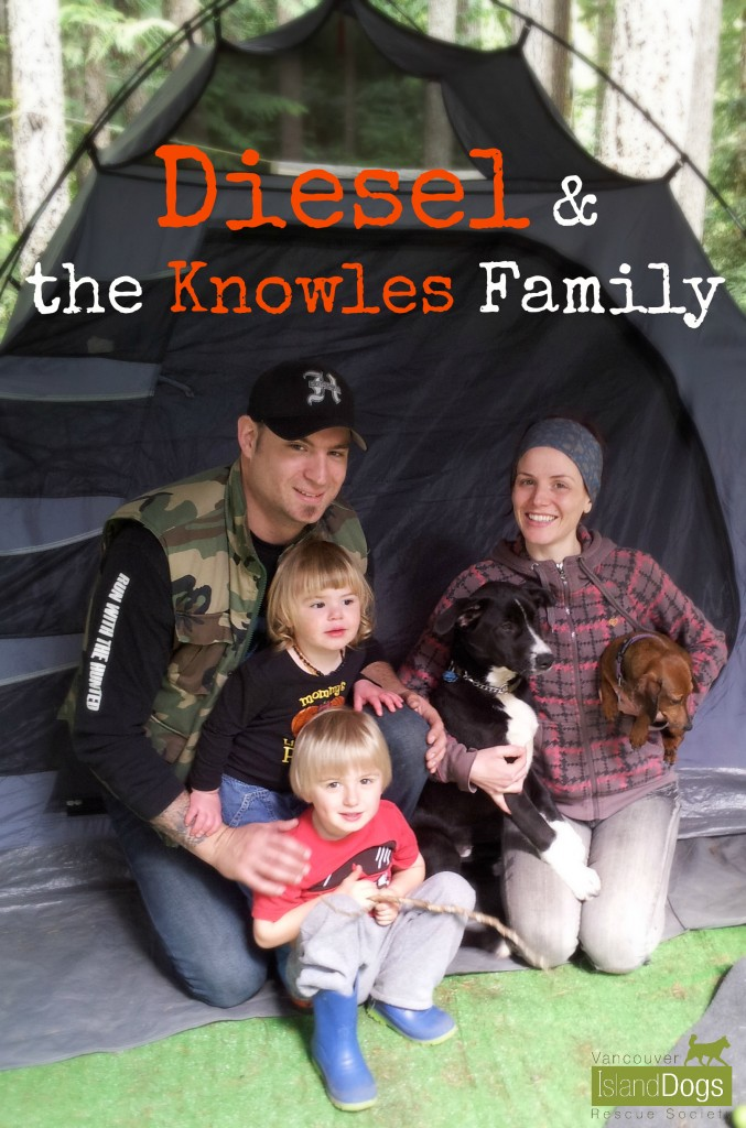 Diesel camping with his new family