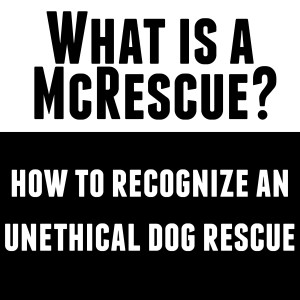 Unethical vs ethical dog rescue